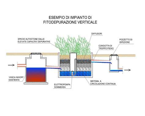 vasca fitodepurazione fitodepurazione lucca livorno delta acque