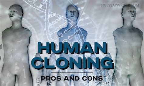 Cloning Essays by Writing A Cloning Essay Pros And Cons Of Human Cloning