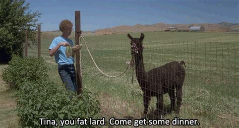 tina eat your food tina you fat lard tumblr