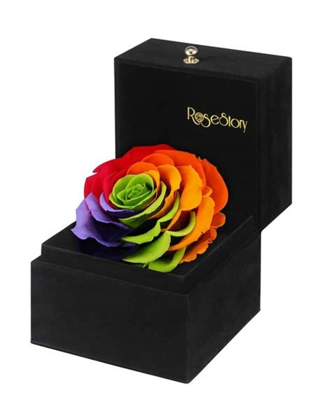 Box A Single Purple Multicolor Preserved Flower Rosestory 174 Unique Exquisite Single Rainbow