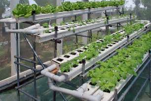 camarillo ca hydroponic gardening supplies soil