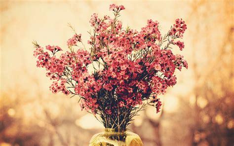 Faces Vase Flower Wallpaper 1920x1200 42465