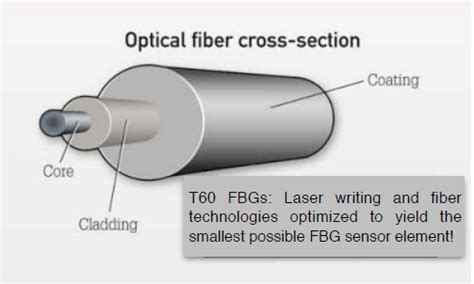 optical cross section a growing demand for thin fbgs in sensing applications