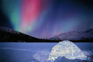 northern lights igloo alaska photo information