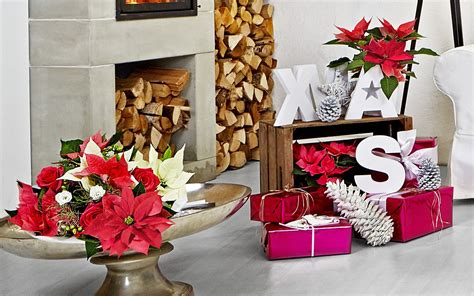 decoracion navidena  sala de estar moderna hogarmania