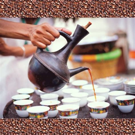 Instant 3in1 Trivia 26 ethio interesting facts about coffee