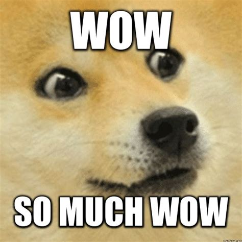 Meme Dog Wow - wow doge original www pixshark com images galleries