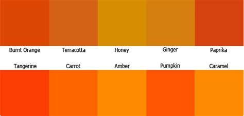 orange color shades the psychology of color how to color scheme by prateh kuchea on deviantart