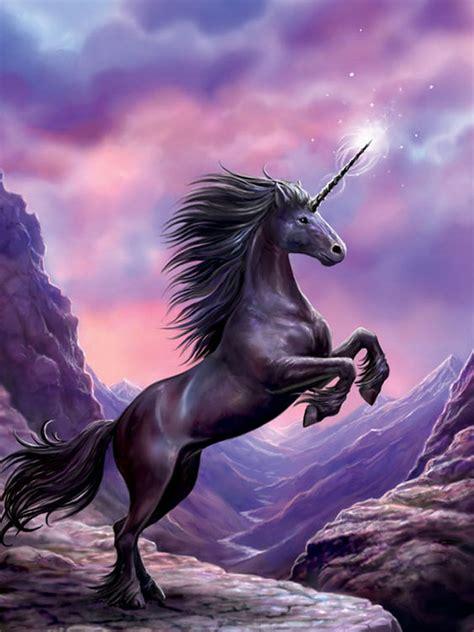 Cool Unicorn rainbow unicorn wallpapers hd cool unicorns and