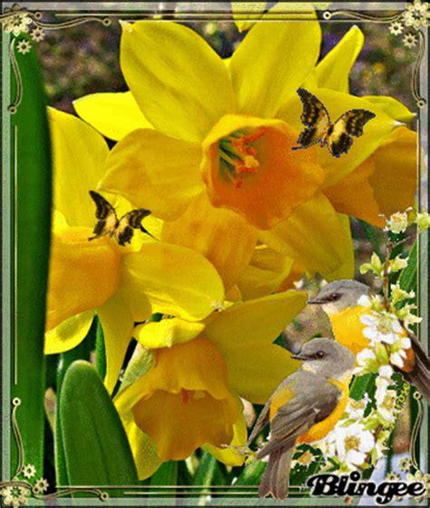 immagini di fiori gialli immagine fiori gialli 122188485 blingee