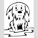 wet dog coloring page wet dog colouring sheet