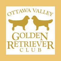 ottawa valley golden retriever club ottawa valley golden retriever club owners breeders and fanciers puppies trials