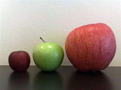 apple japan karibu prosper japanese apples