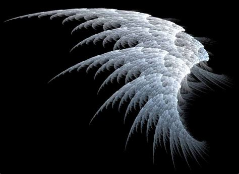 hq wallpapers angel wings wallpapers