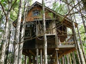 Tree Houses To Live In Awesome Tree Houses I Could Live In Thechive