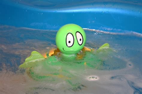 turtle in the bathtub song a turtle in a bath photo 1419714 freeimages com