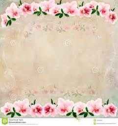 Vintage Floral Background Royalty Free Stock Images Image: 23632209