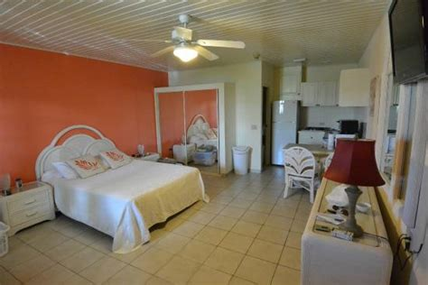 Quality Appartments Aruba by Studio At Quality Apartments Picture Of Aruba Quality