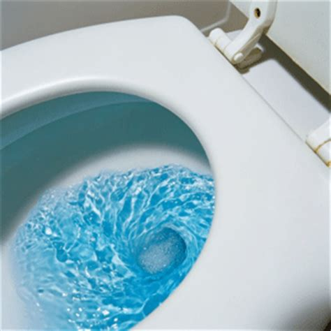 Water Toilet Seat How To Clean Toilet Stains Howstuffworks