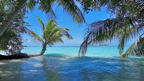 Sound Wave by Ocean Waves On Tropical Island Maldives Ambience Sound
