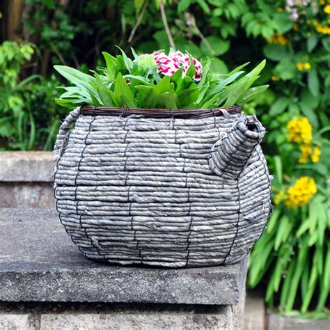 Garden Teapot Planter by Wicker Teapot Planter On Sale Fast Delivery