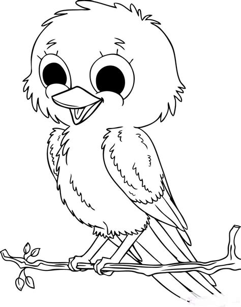 coloring pages of birds cute baby birds coloring pages to printables