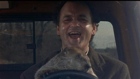 bill murray groundhog day xavier 12 things you probably didn t about the