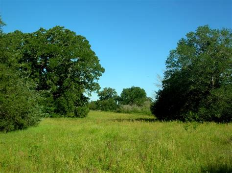 Brazos County Property Records Archived Land Near 12 55 Acres In Brazos County At 6212 Rosier Road 77808 Bryan