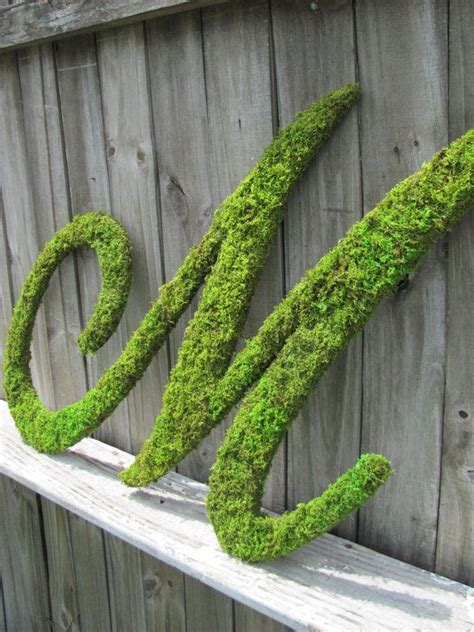 moss covered letters 25 best ideas about moss covered letters on