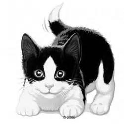 felix eminc 233 s en gel 233 e 32 x 100 g barquettes pour chat zooplus
