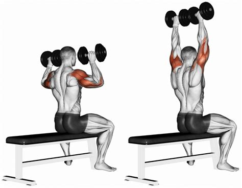 70 pound dumbbell bench press shoulders workouts archives mn prime