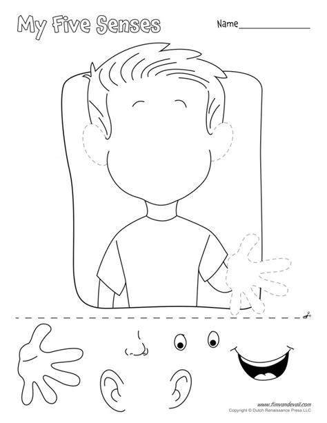 five senses kindergarten worksheets worksheet mogenk