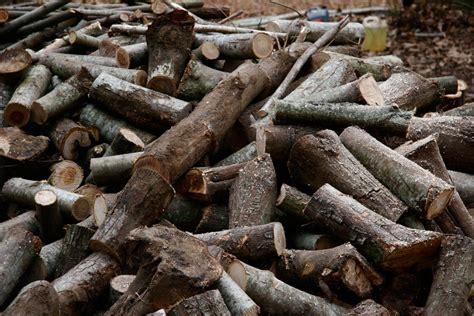 vendita legna per camino vendita e consegna a domicilio di legna di quercia roma