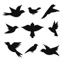 bird vectors photos and psd files free download