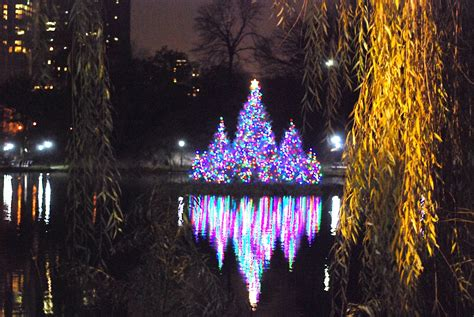 discovery christmas tree nyc nyc lighting of the picturesque discovery center and flotilla of trees on