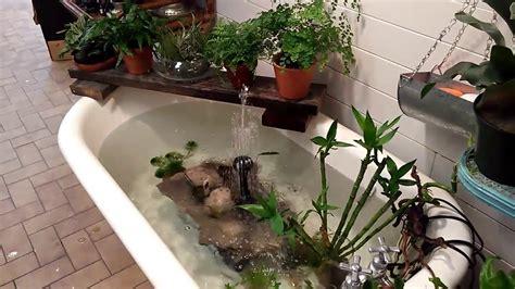 bathtub fish pond 78 bathtub pond ideas 20 yard landscaping ideas to