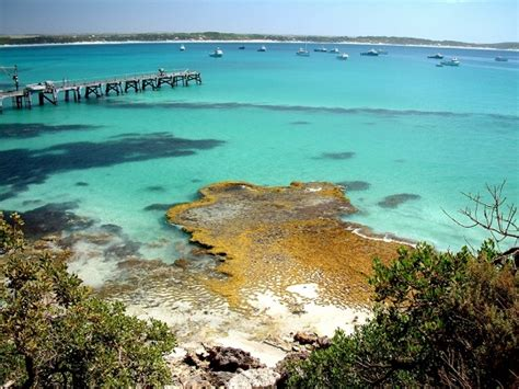 8 Beaches You To Visit by 8 Adelaide Beaches You Need To Visit Now 171 Europcar