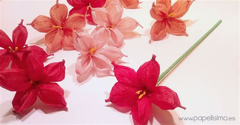 como hacer flores de papel para navidad flor de papel con papel de seda o cresp 243 n papelisimo