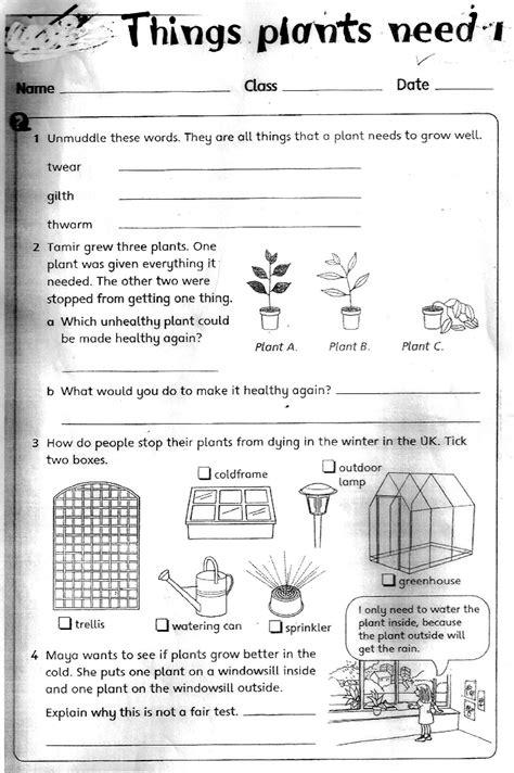 grade science worksheets the city school grade 3 science reinforcement worksheets