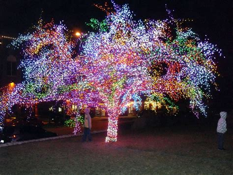 strange christmas lighting displays amazing tree covered