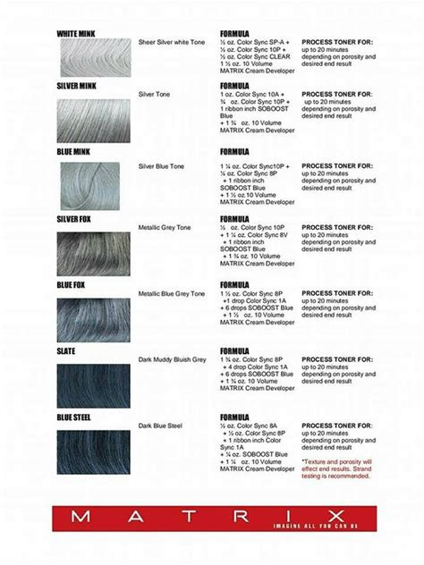 Harga Matrix Hair Color Grey le catalogue d39ides of gray hair color