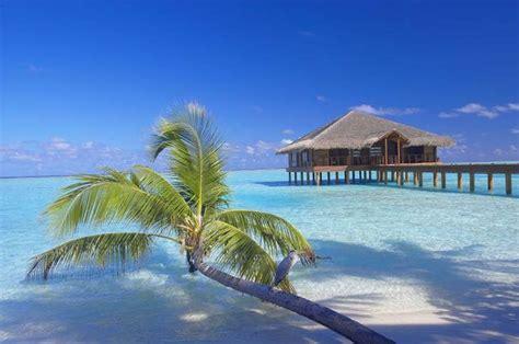 11 cheap overwater bungalow resorts from around the world