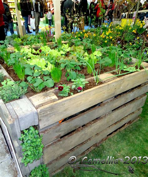 Vegetable Garden In Pallet Raised Garden Bed From Crates Garden