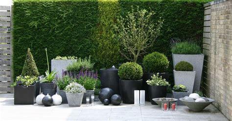piante per fioriere fioriere vasi per piante come scegliere le fioriere