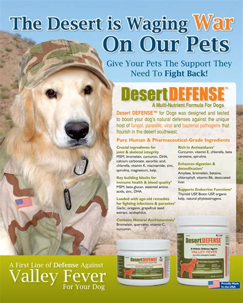 do dogs get fevers desert defense dogs a line of defense against valley fever for your