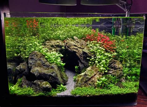 how to aquascape a planted tank xz s 3ft high tech low tech nano experiments the