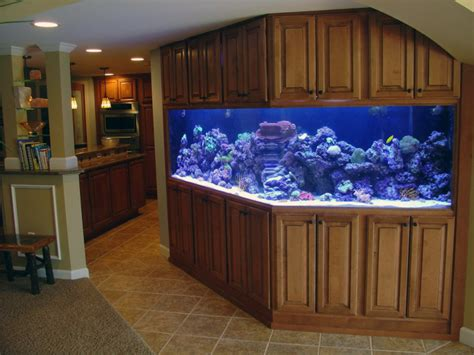 decoration potential cool aquarium for your house