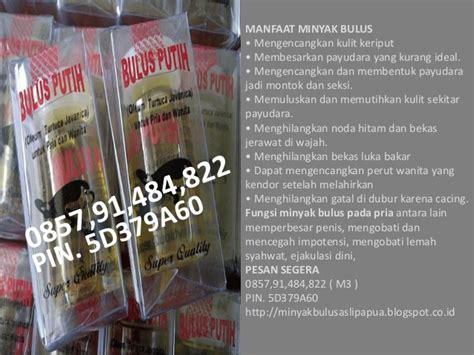 Berapa Minyak Bulus Asli Papua penjual minyak bulus asli kalimantan penjual minyak bulus