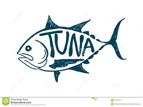 draw vector draw tuna fish vector stock vector image 57577917
