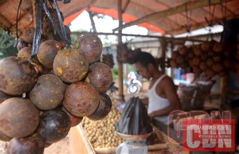 indonesia incar pasar buah tropis selandia  cendana news